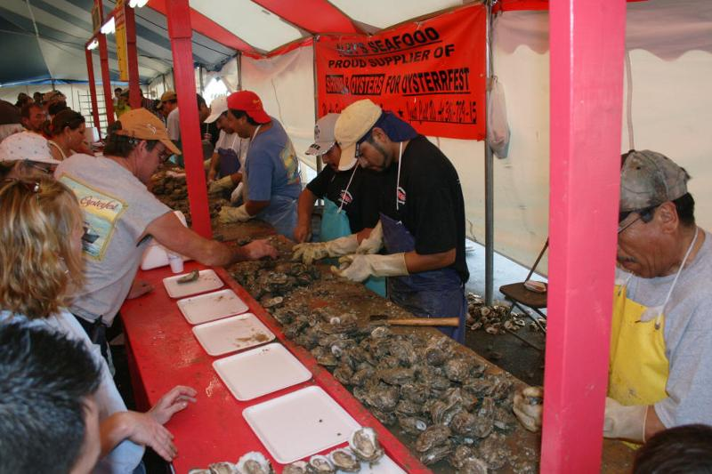 oysterfestshuckingoysters