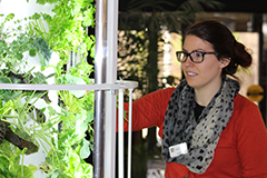 Staff member waters the library_s tower garden