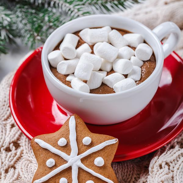Hot chocolate and marshmelow in a white cup on a red plate on a knitted warm blanket. vertically. Christmas cookies.