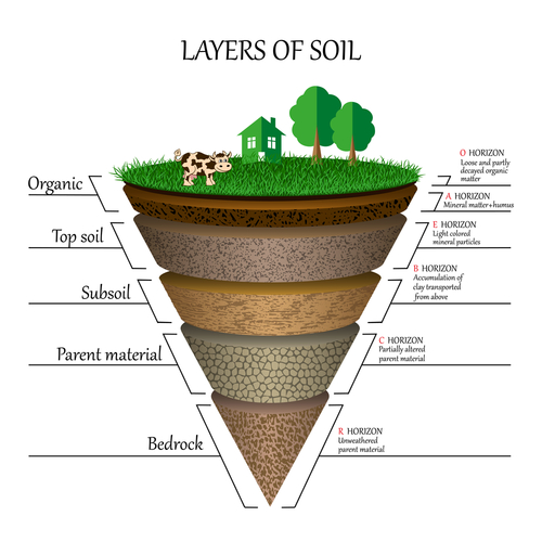 Layers of soil_ education diagram. Mineral particles_ sand_ humus and stones_ clay_ natural fertilizer. Template for banners_ page_ posters_  illustration.