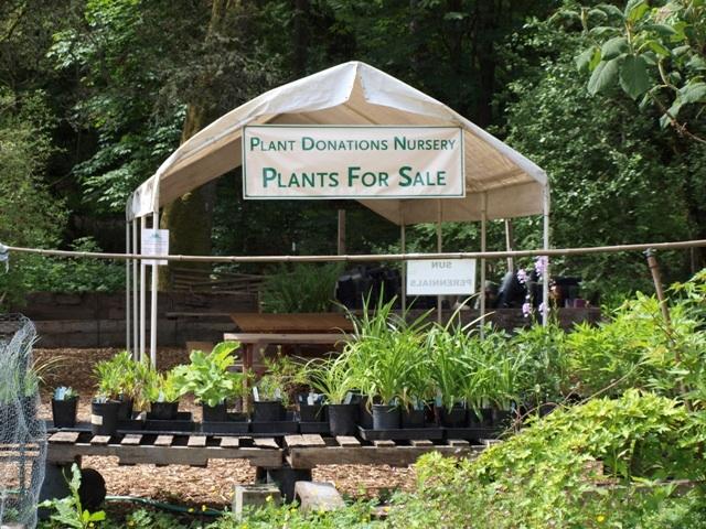 plant donation tent