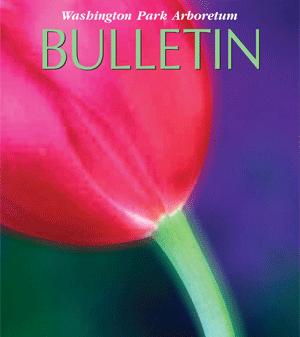 bulletin cover spring 2012