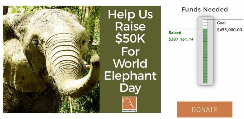 help us raise _50K for World Elephant Day