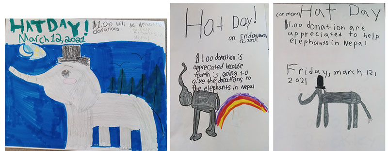 A sampling of posters students made for Hat Day to raise funds for elephants in Nepal