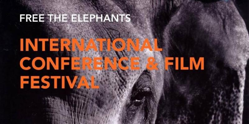 Free the elephants conference _ film festival