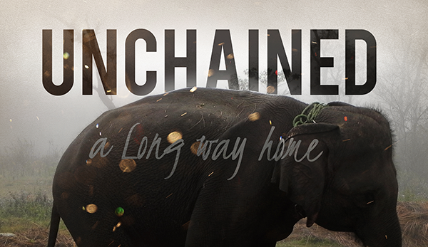 Unchained movie poster