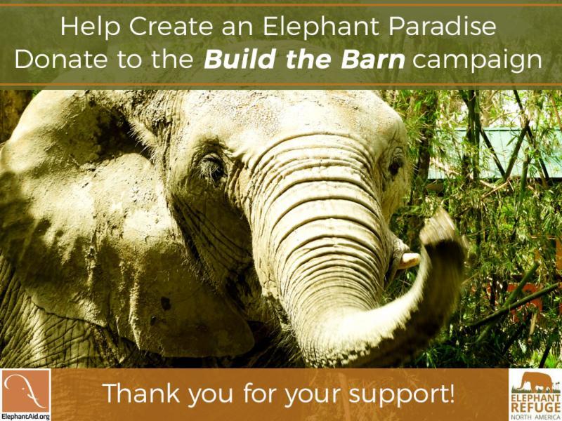 help EAI build the barn