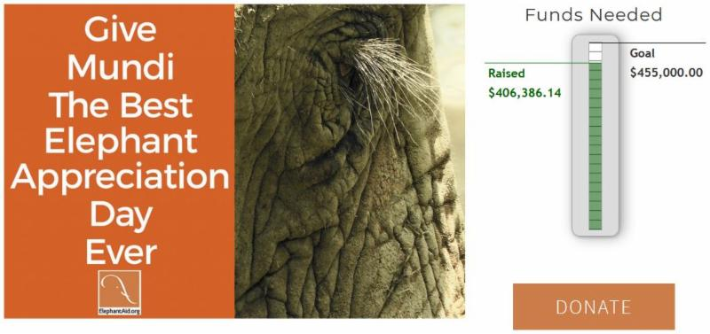 Let_s finish the elephant barn. Donate today.