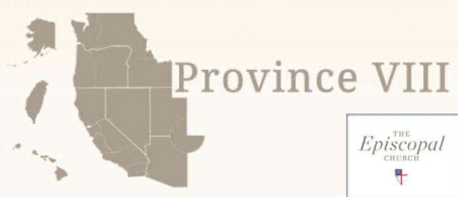 Province VIII logo