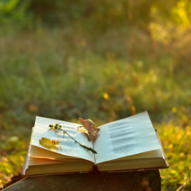 open book with yellow flowers and grass