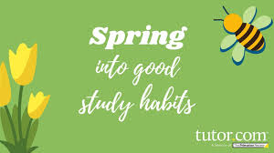 spring into good study habits with tutor dot com picture of flower and bee