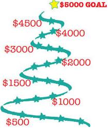 $5000 dollar goal
