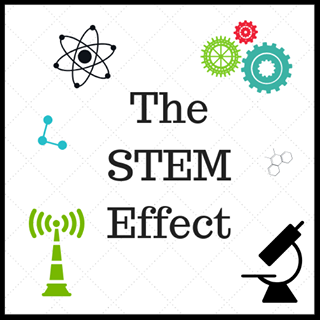 The STEM Effect Logo