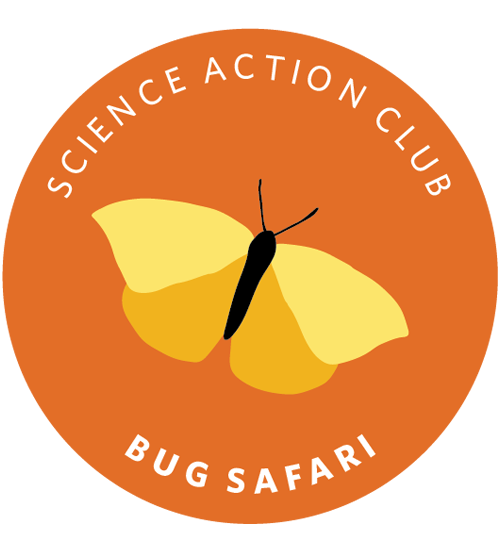 Science Action Club Bug Safari