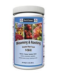 blooming _ rooting