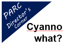 Sep 2019 Director's Corner