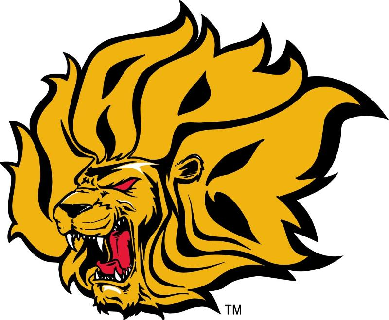 Go Lions Go!