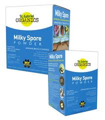 milky spore
