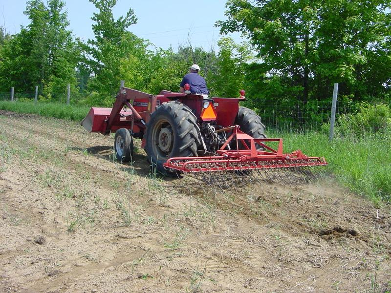 Tractor with tine cultivator