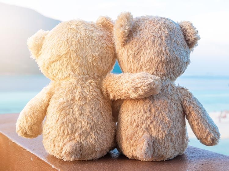 Add a note to the bear suggesting they give it a hug whenever they feel the need