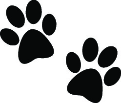 black_paw_prints.jpg