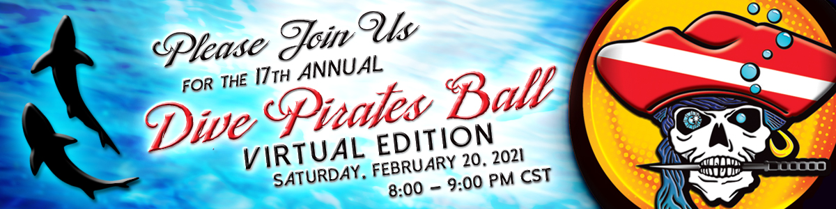 banner please join us for the 17th annual ball virtual edition feb 20 8pm