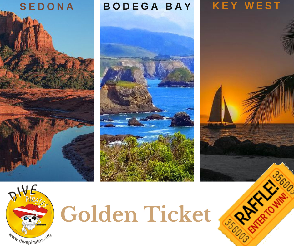 golden ticket photos of three destinations up for grabs
