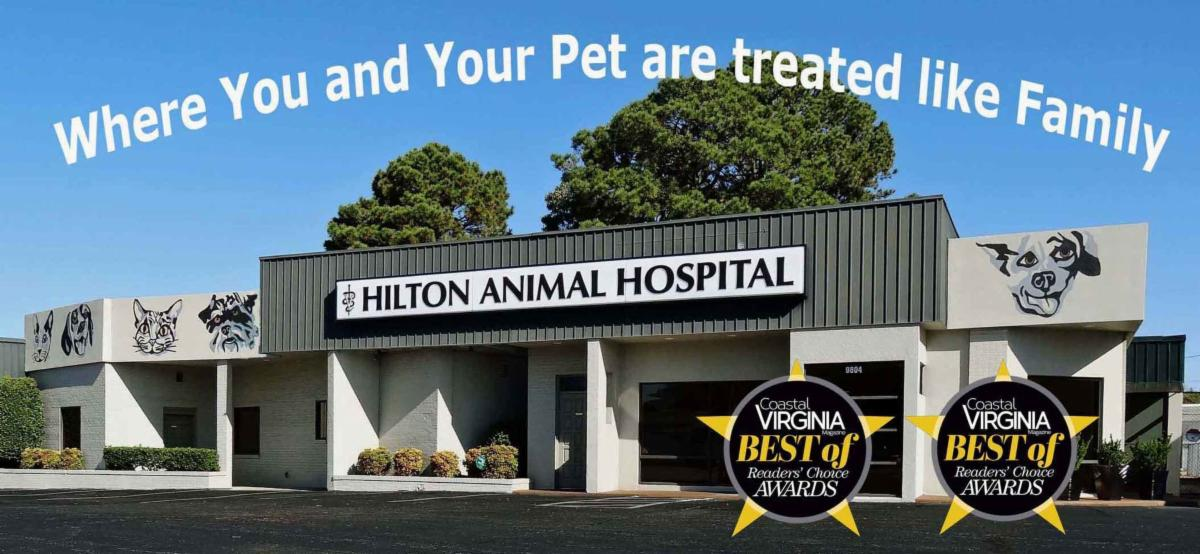 Hilton Animal Hospital front of the building