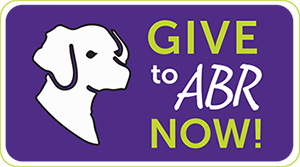 Give to ABR Now!