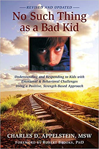 Book cover for No Such Thing as a Bad  Kid