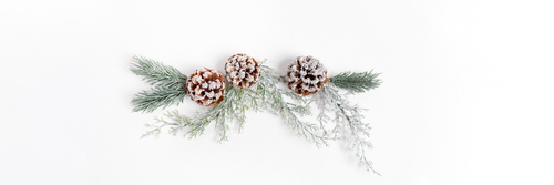 Xmas festive wide banner with reusable Christmas decor made of tree branches_ and pine cones on white backdrop. Sustainable Christmas. Top view. Copy space for text.