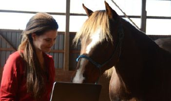 Girl_laptop_horse