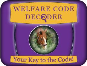 Code Decoder