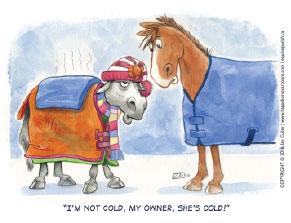 Blanket cartoon _Ian Culley