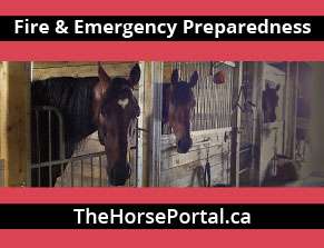 Fire & Emergency Preparedness