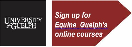 UofG Equine Guelph Courses