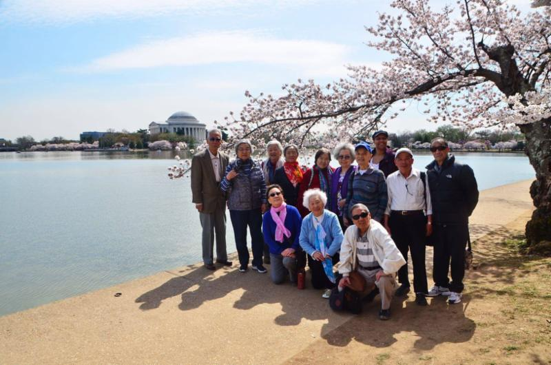 group of seniors at the reflecting pool with cherry blossoms and Jefferson memorial in the background