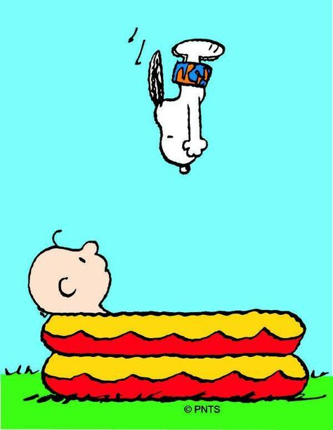 Snoopy dives into Charlie Brown's pool