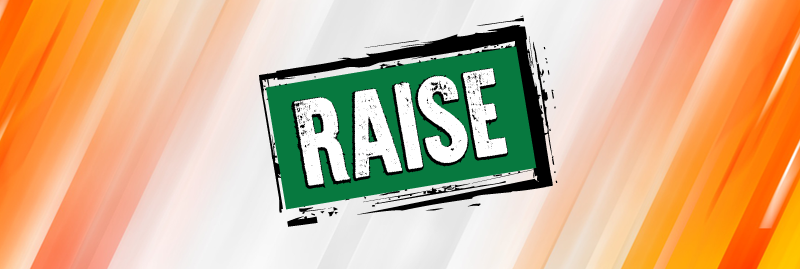 Newsletter Banner - RAISE logo on orange striped background