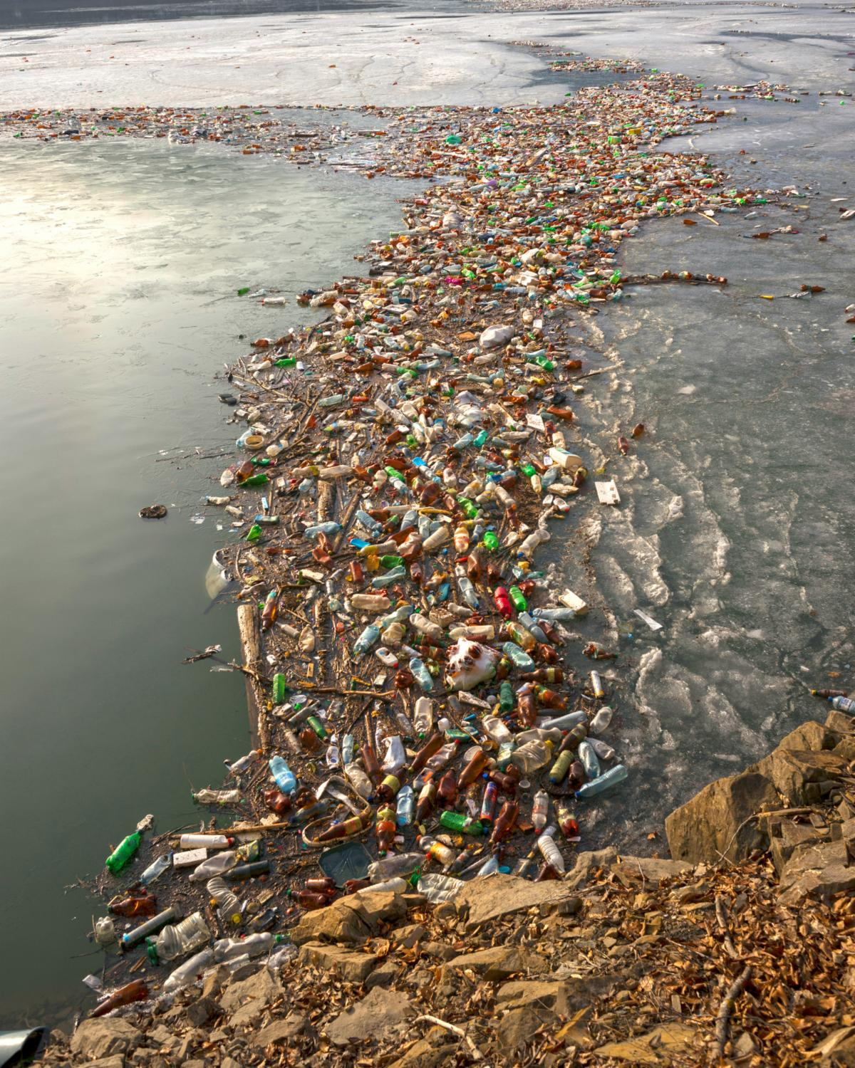 Plastic pollution along the coast