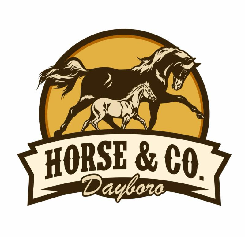 horse and co