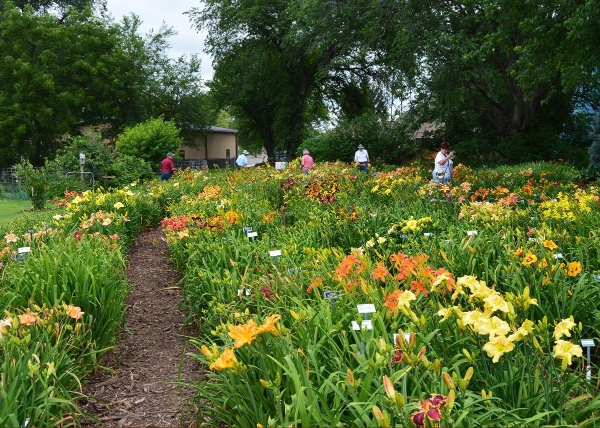 Keast Garden Scene