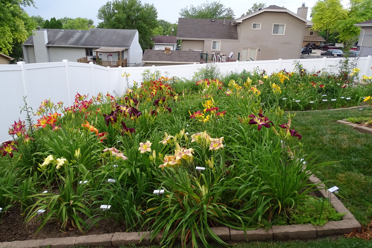Mary Baker's Garden