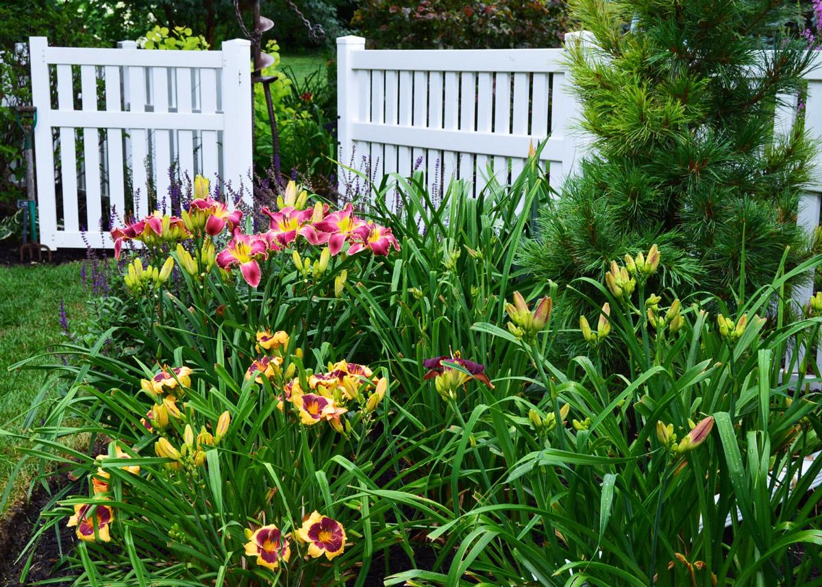 Garden gate at Nancy Lee Anderson's Farmony Garden