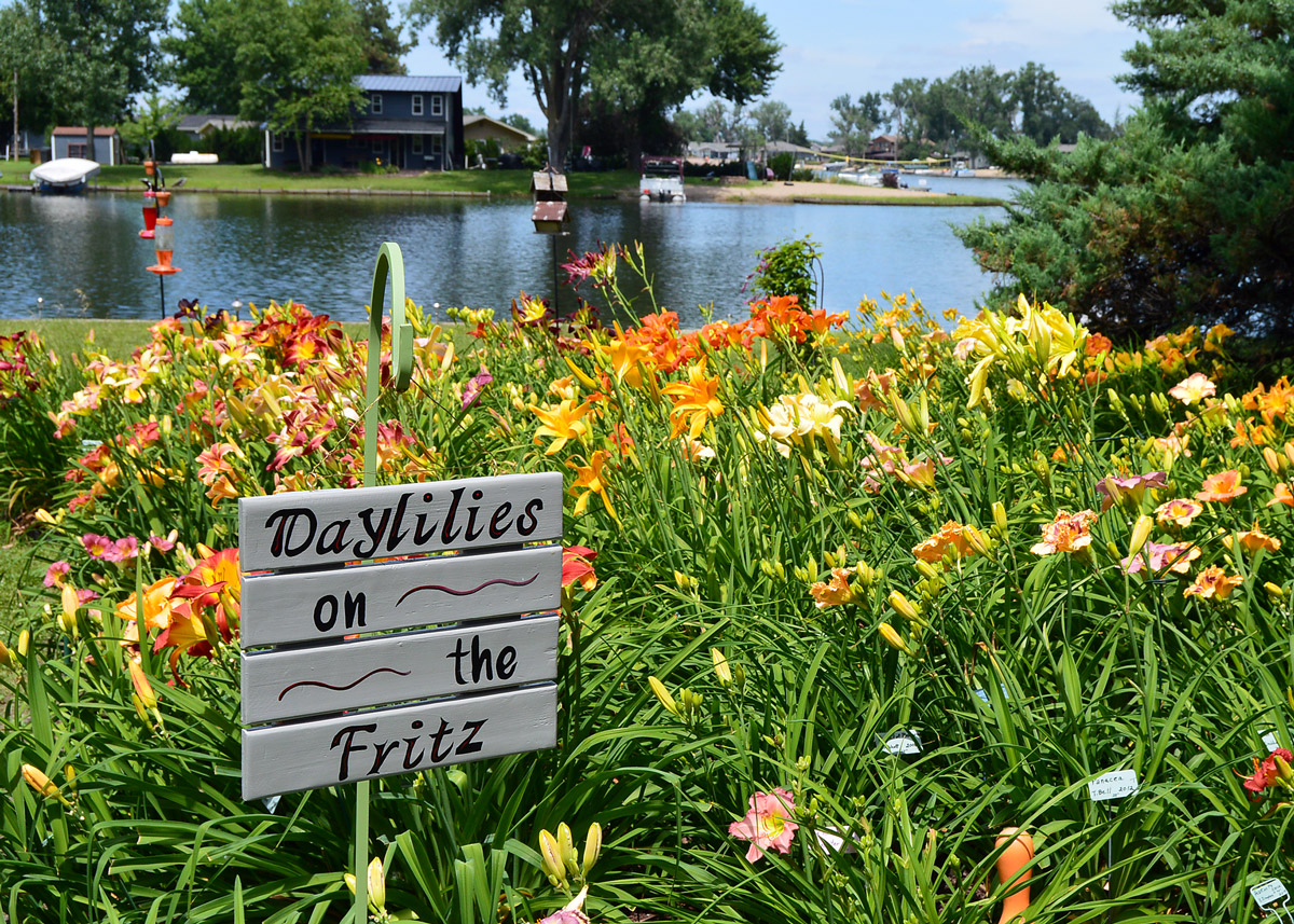 Rita and Lyle Kahnk lakeside Garden on the Fritz featuring daylilies