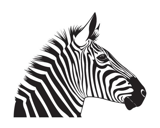 Zoey's logo lrg