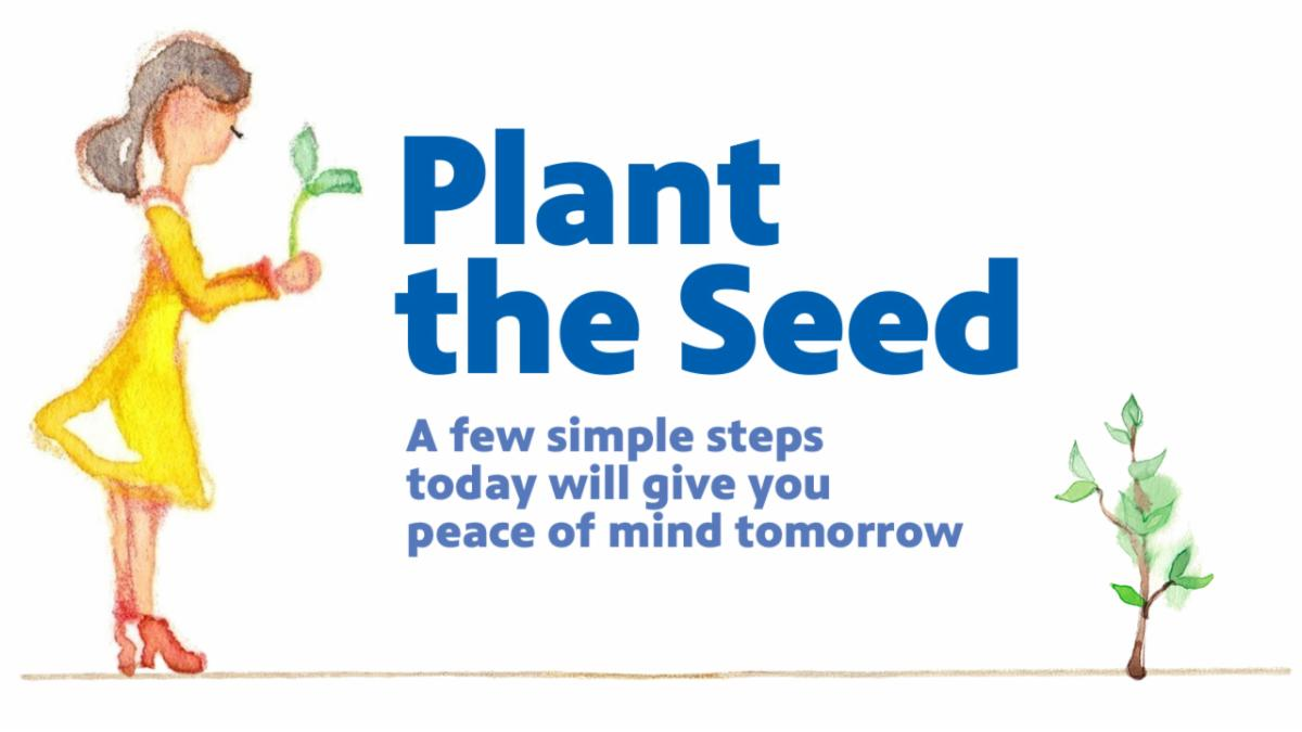 Plan the Seed