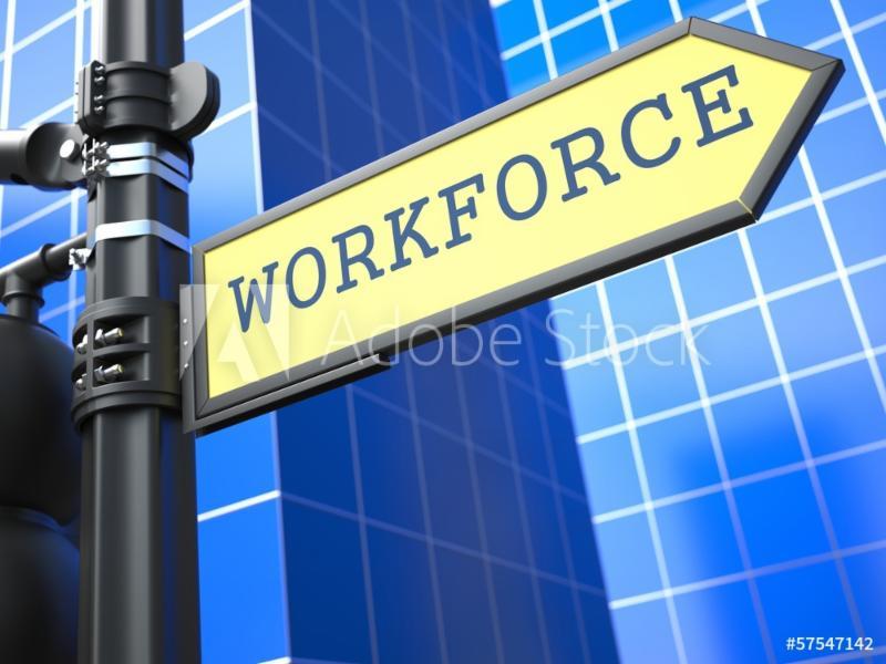 Develop your workforce