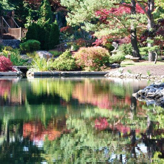 Schedel Arboretum _ Garden