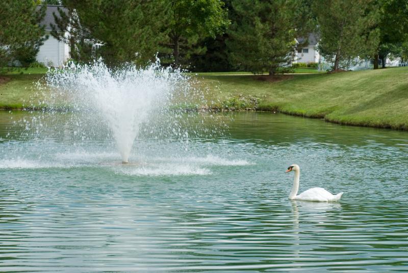 Pond at Swan Creek Retirement Home